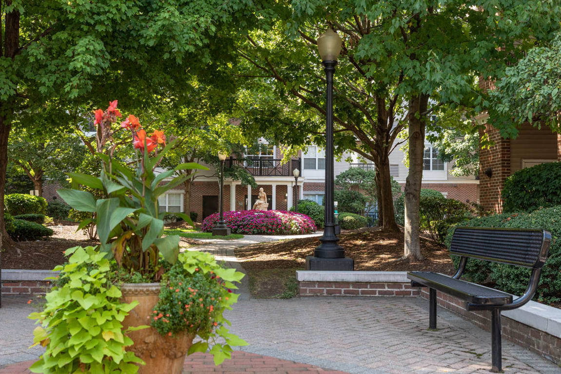 Beautifully landscaped courtyard with a bench at Sofi Parc Grove in Stamford, Connecticut