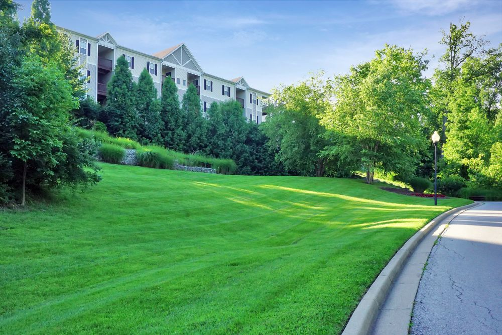 Well-maintained green grass and mature trees at our community at Renaissance St. Andrews in Louisville, Kentucky