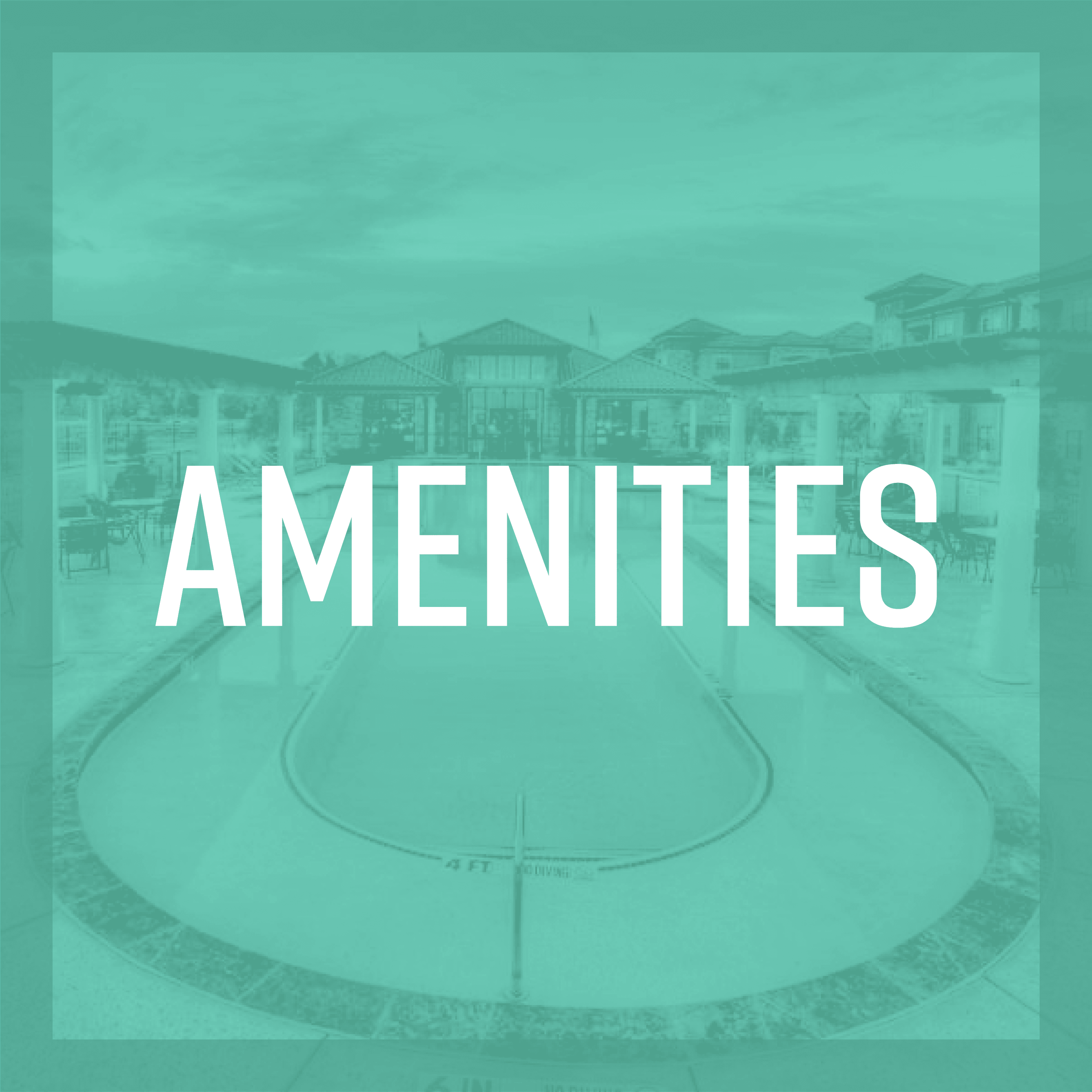 Link to amenities at Amira at Westly in Tampa, Florida