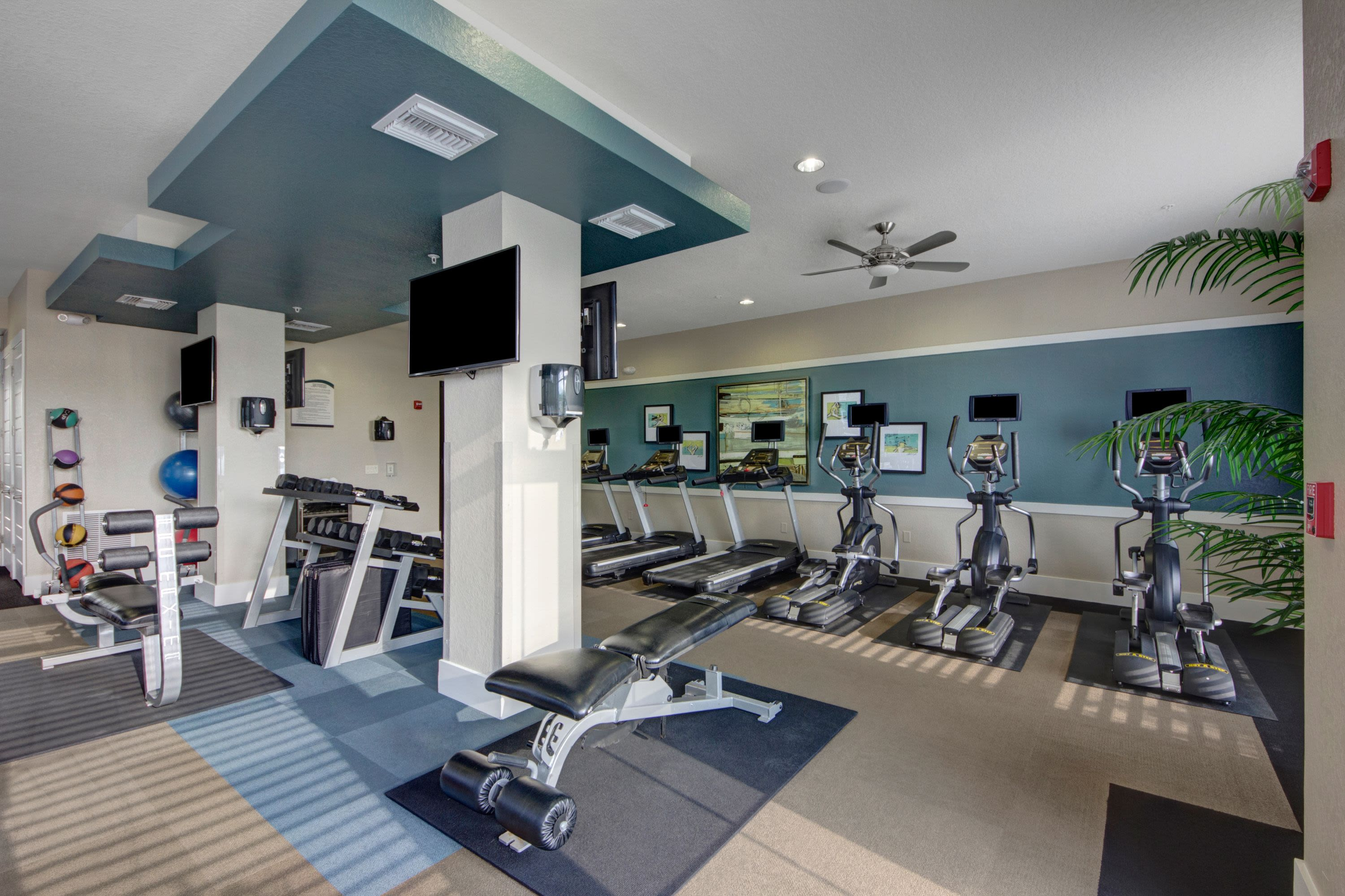Fitness equipment at The Courtney at Lake Shadow in Orlando, Florida