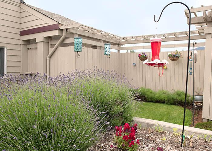 Washington gardens memory care