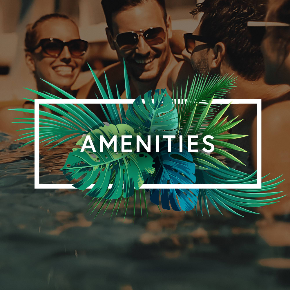 Link to amenities at Aliro in North Miami, Florida
