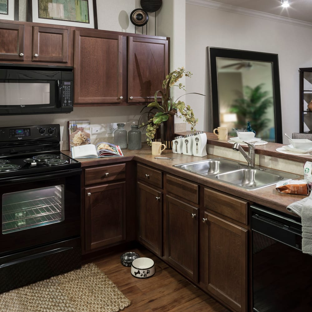 Beautiful kitchen with dual-stainless steel sink at The Asten at Ribelin Ranch in Austin, Texas