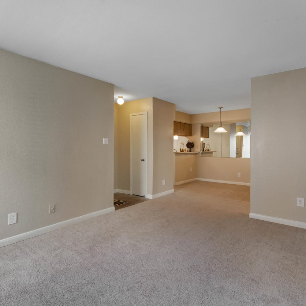 Open layout with plush carpeting at Finley West in Houston, Texas