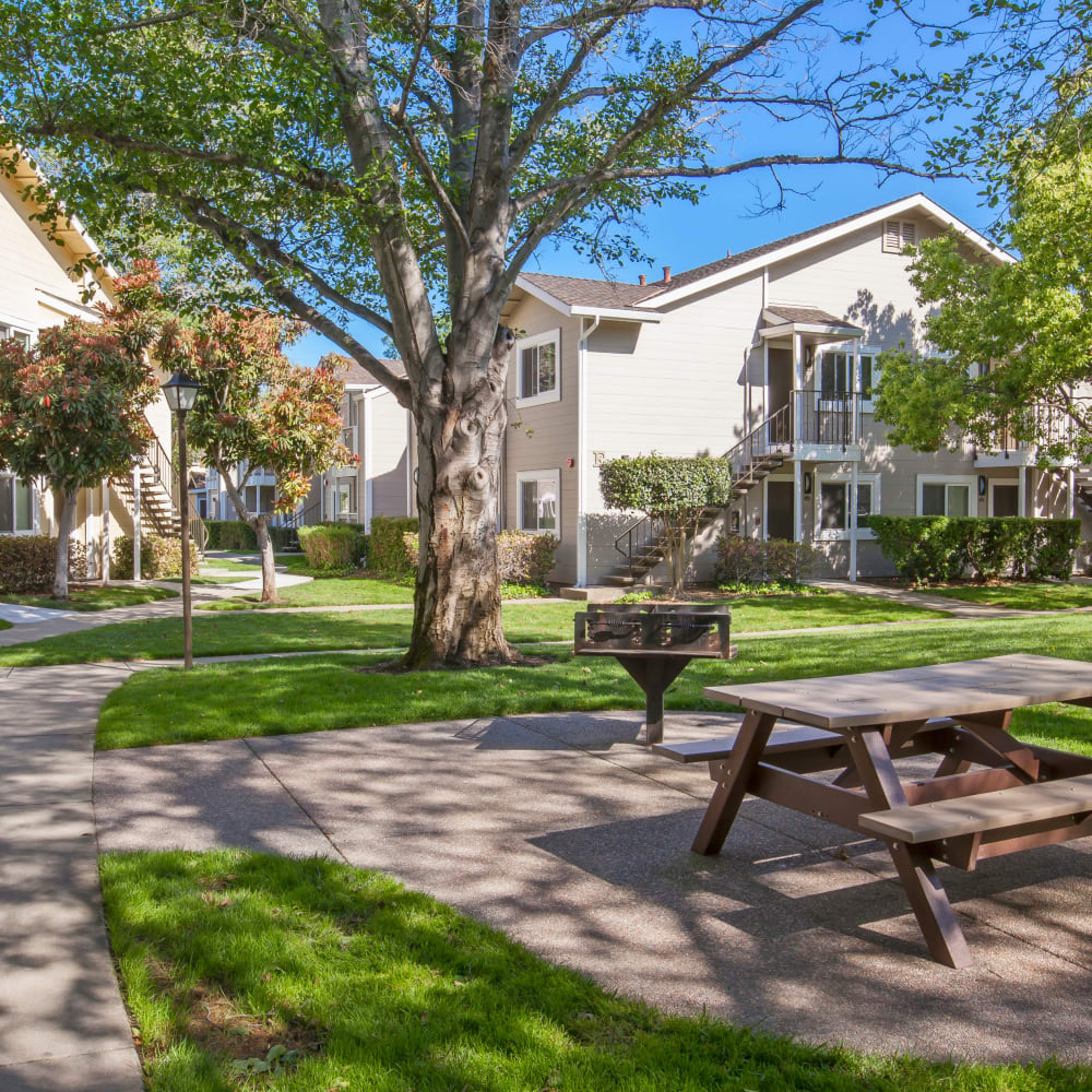 Picnic area at Cypress Pointe Apartments in Gilroy, California