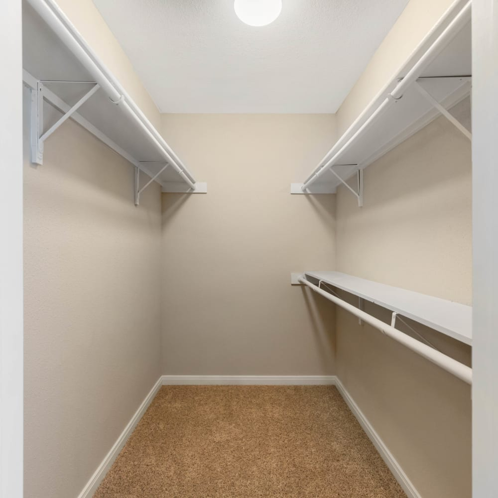 Shelving in a walk-in closet at Lodge @ 1550 in Katy, Texas