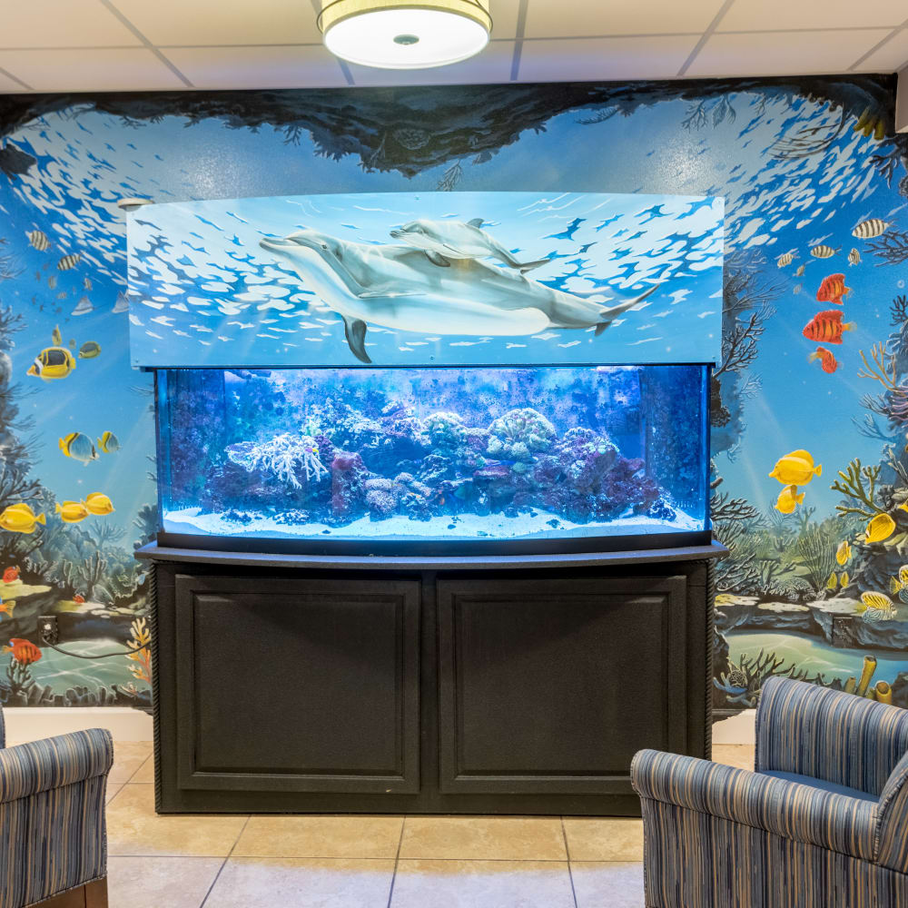 Large fish tank at Inspired Living in Sarasota, Florida