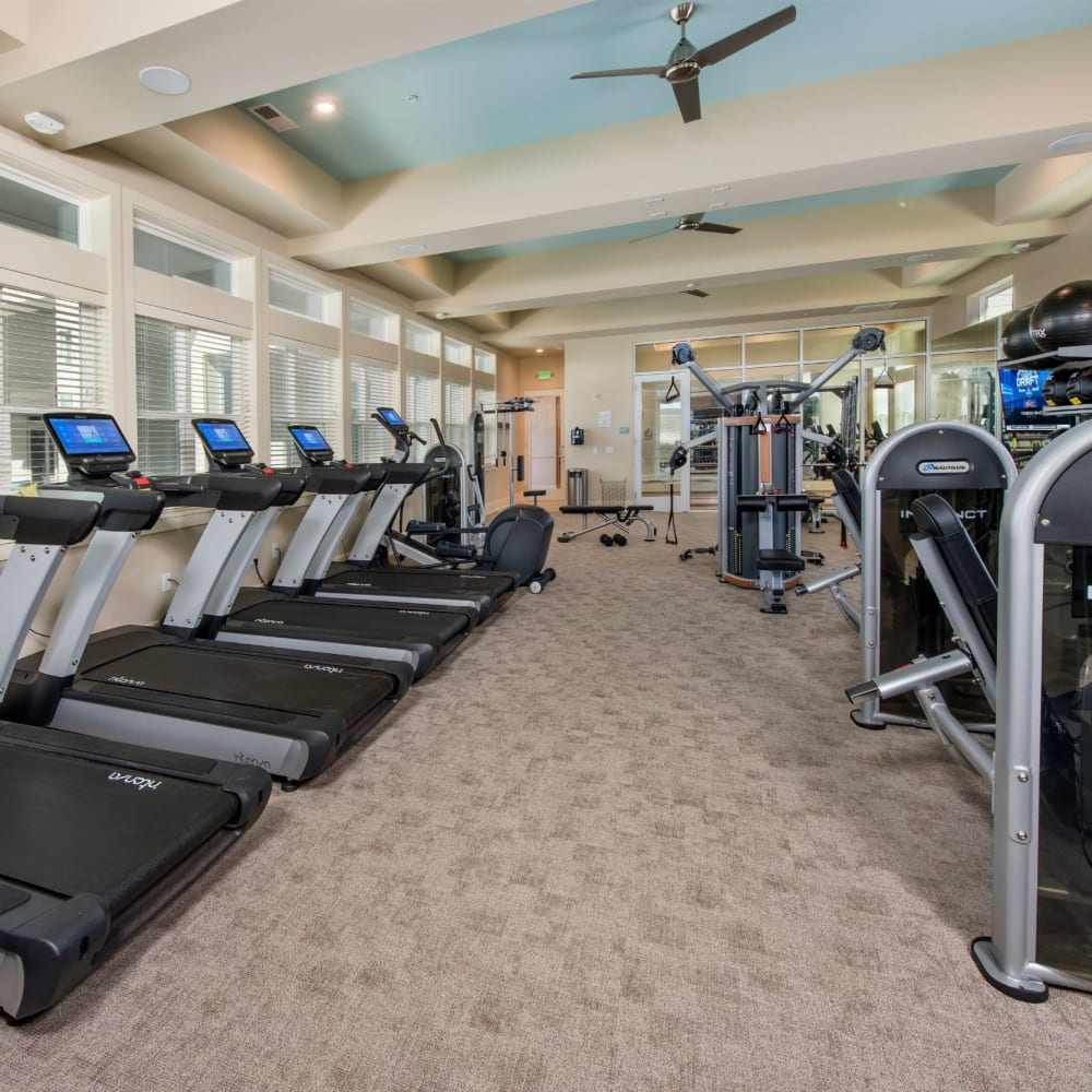 Fitness center at The Elysian in St Johns, Florida
