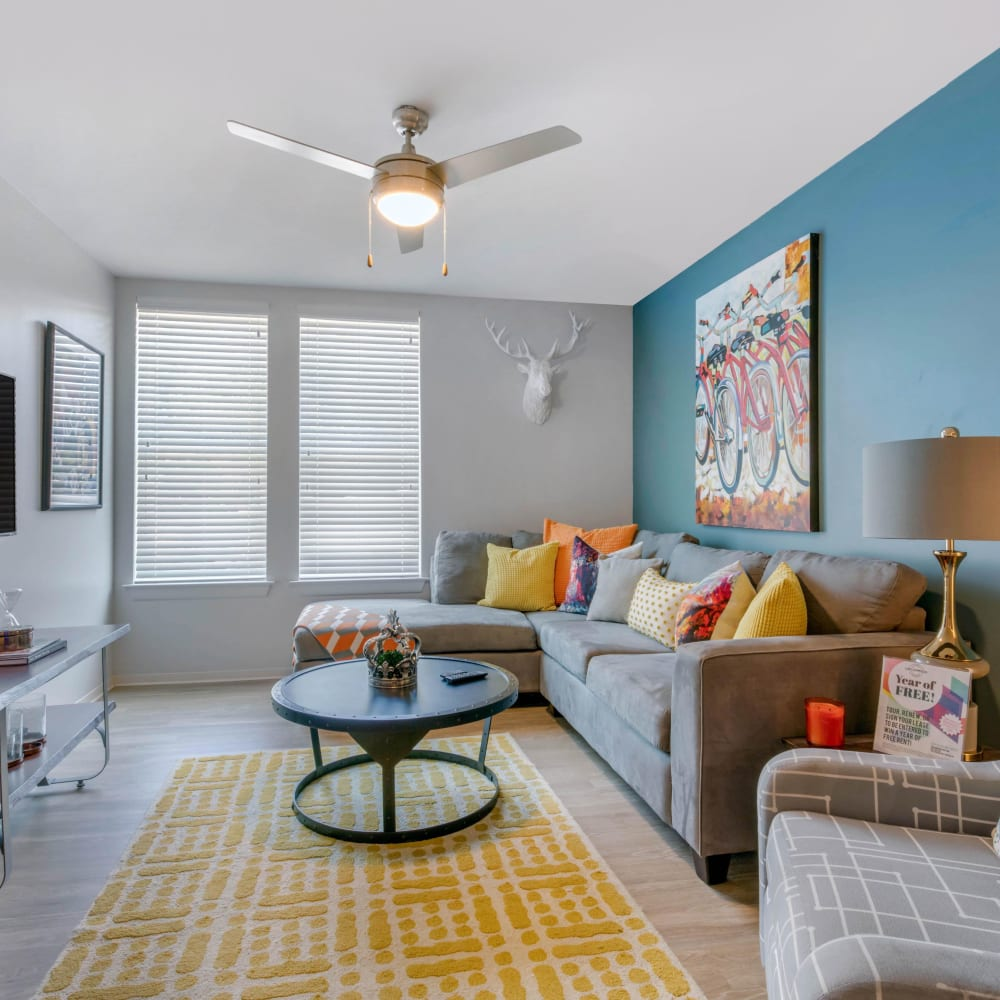 Spacious, bright living room at UNCOMMON Oxford in Oxford, Mississippi