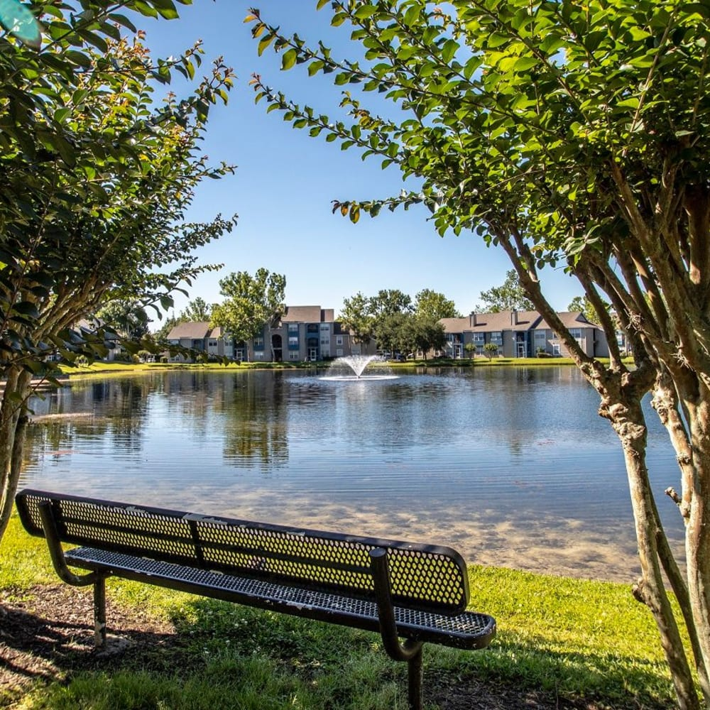 A bench by the lake at Onyx Winter Park in Casselberry, FL