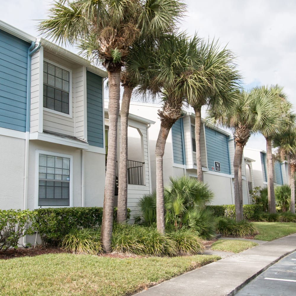 A row of apartments at Fairways at Feather Sound in Clearwater, FL