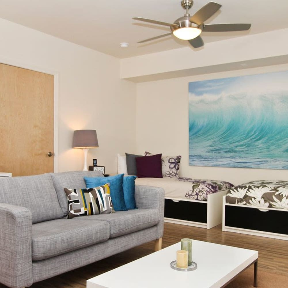 Bright, spacious living room at ICON in Isla Vista, California