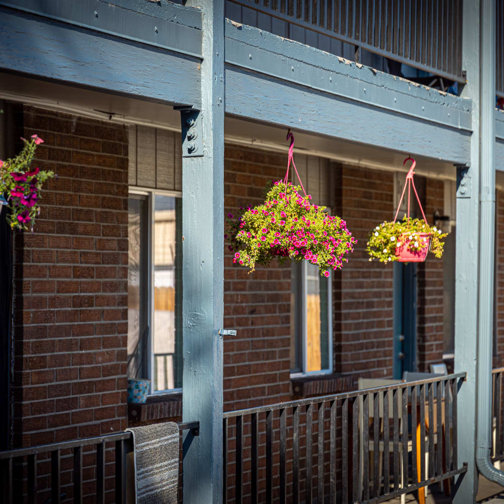 Flowers hanging outside balcony at Crestone Apartments in Brighton, Colorado
