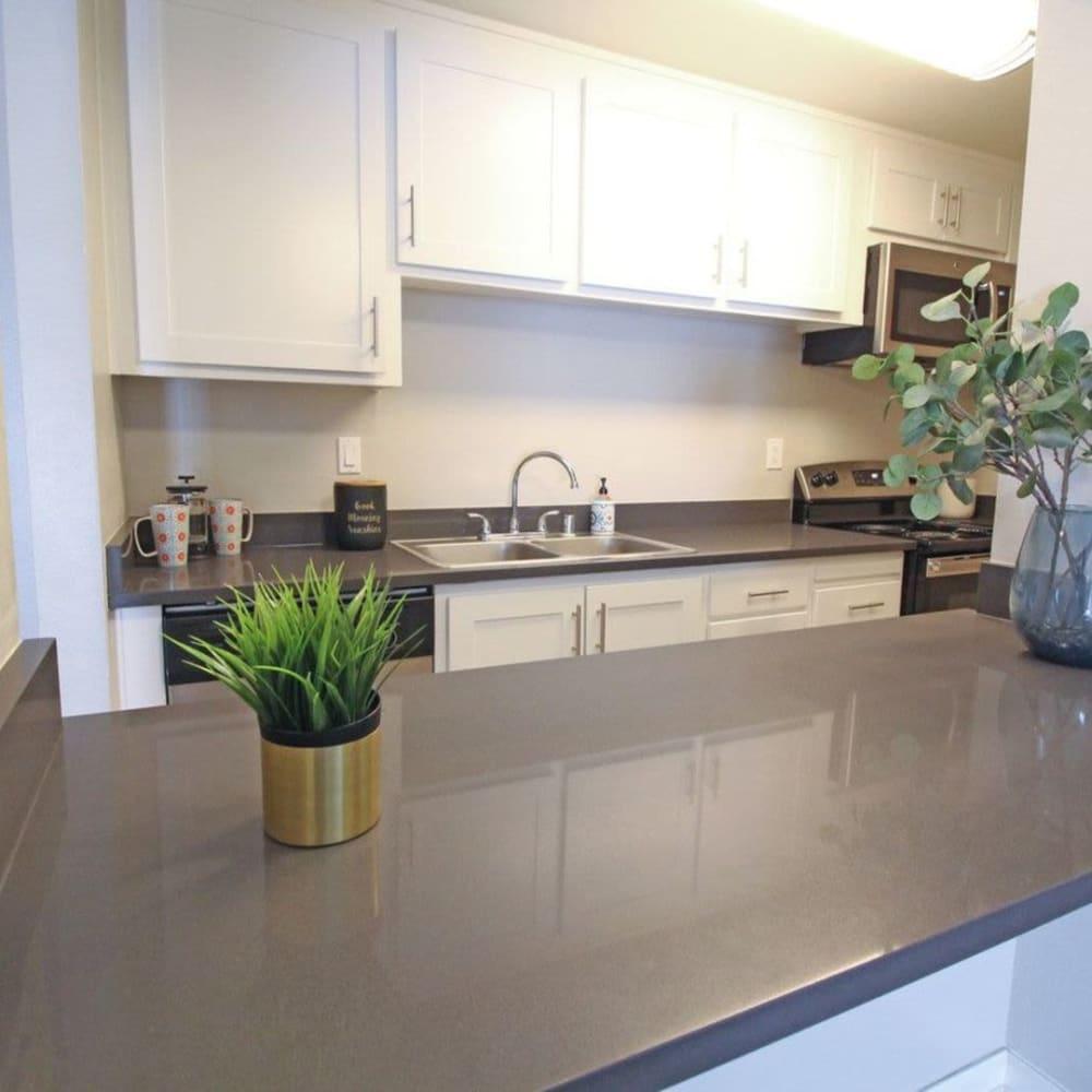 Kitchen countertop at The Davenport in Sacramento, California
