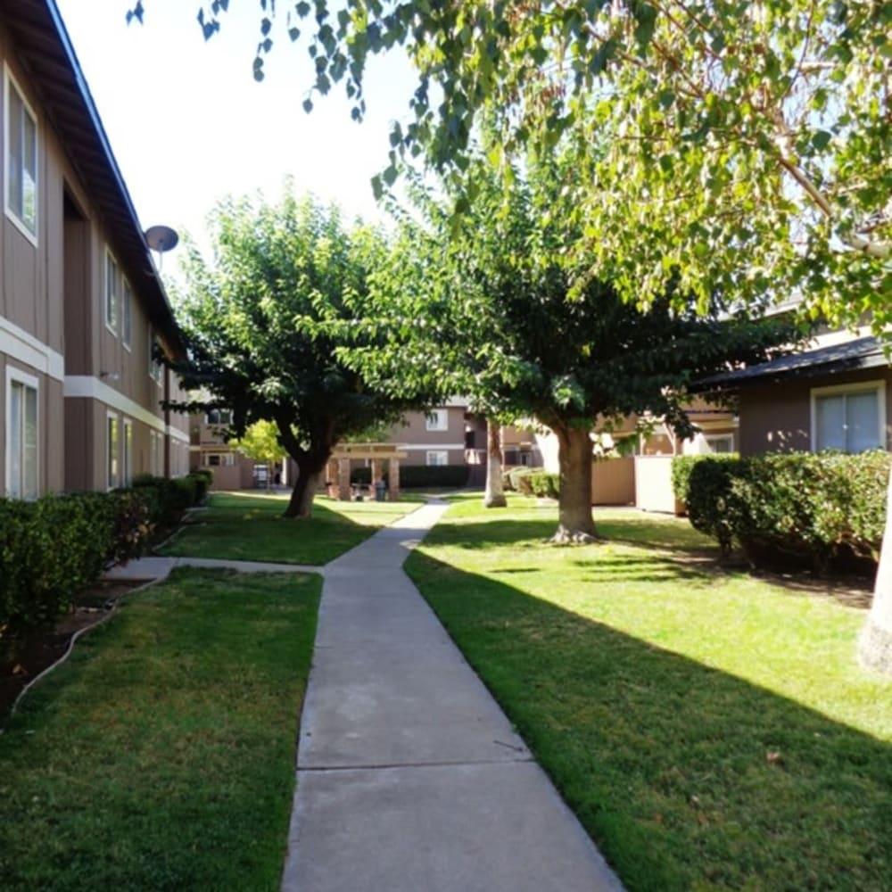 Grassy lawns at Amber Park in Sacramento, California
