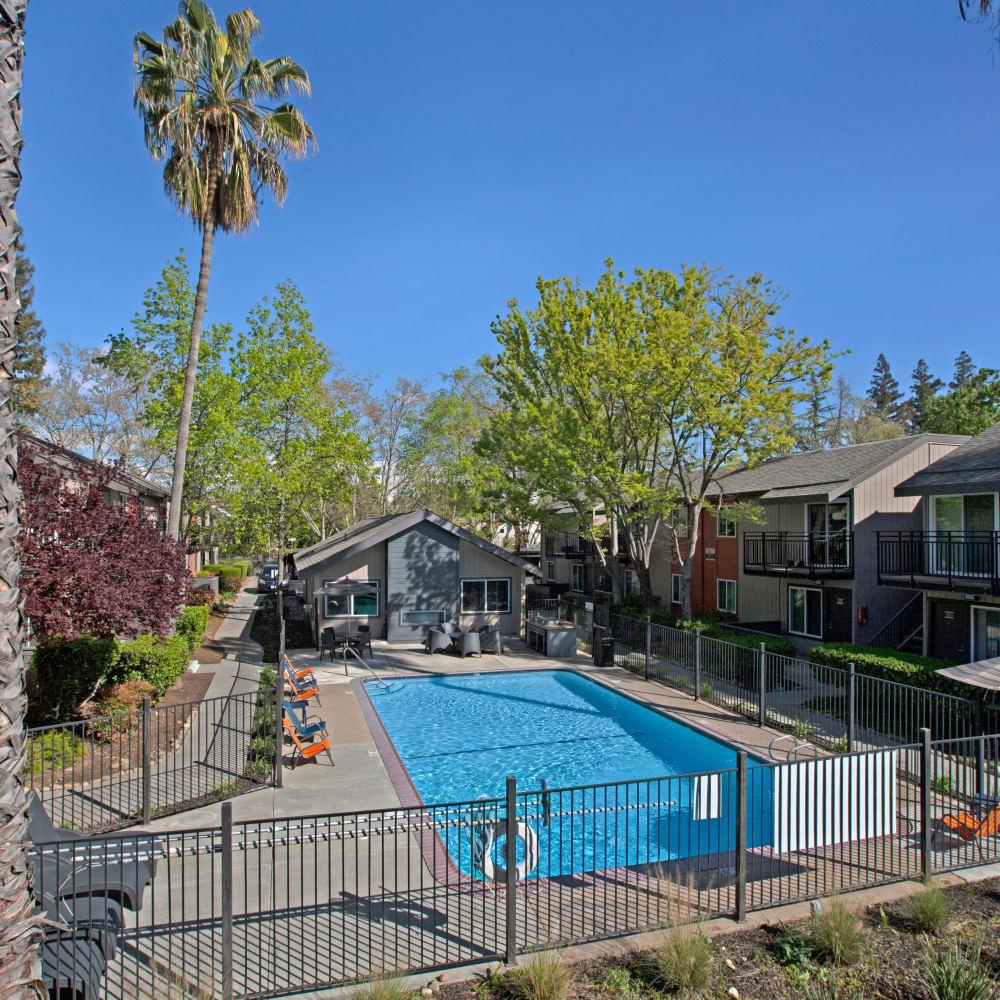 Swimming pool at The Archer in Sacramento, California