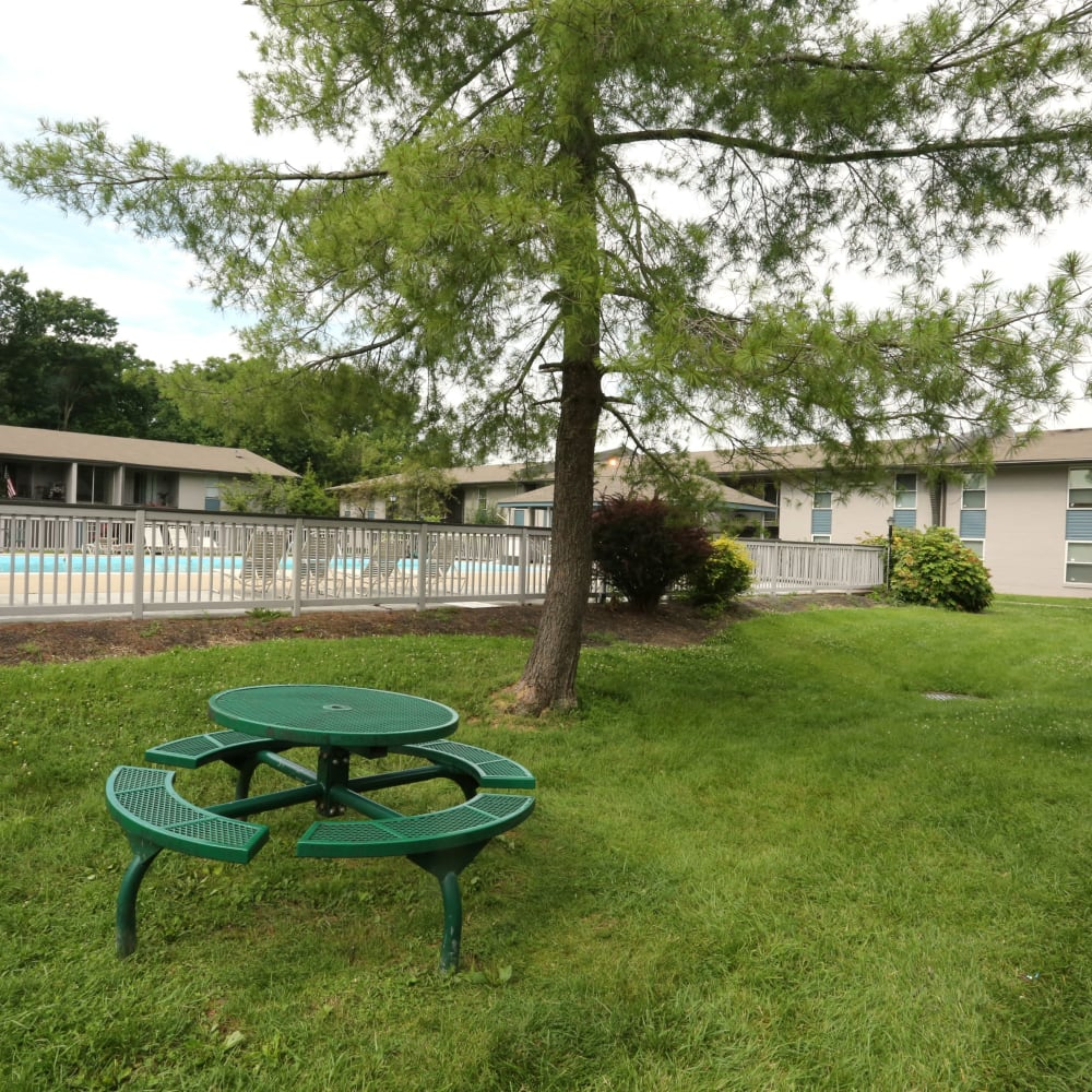Picnic bench and grassy lawn for pets at Willowbrook Apartments in Louisville, Kentucky