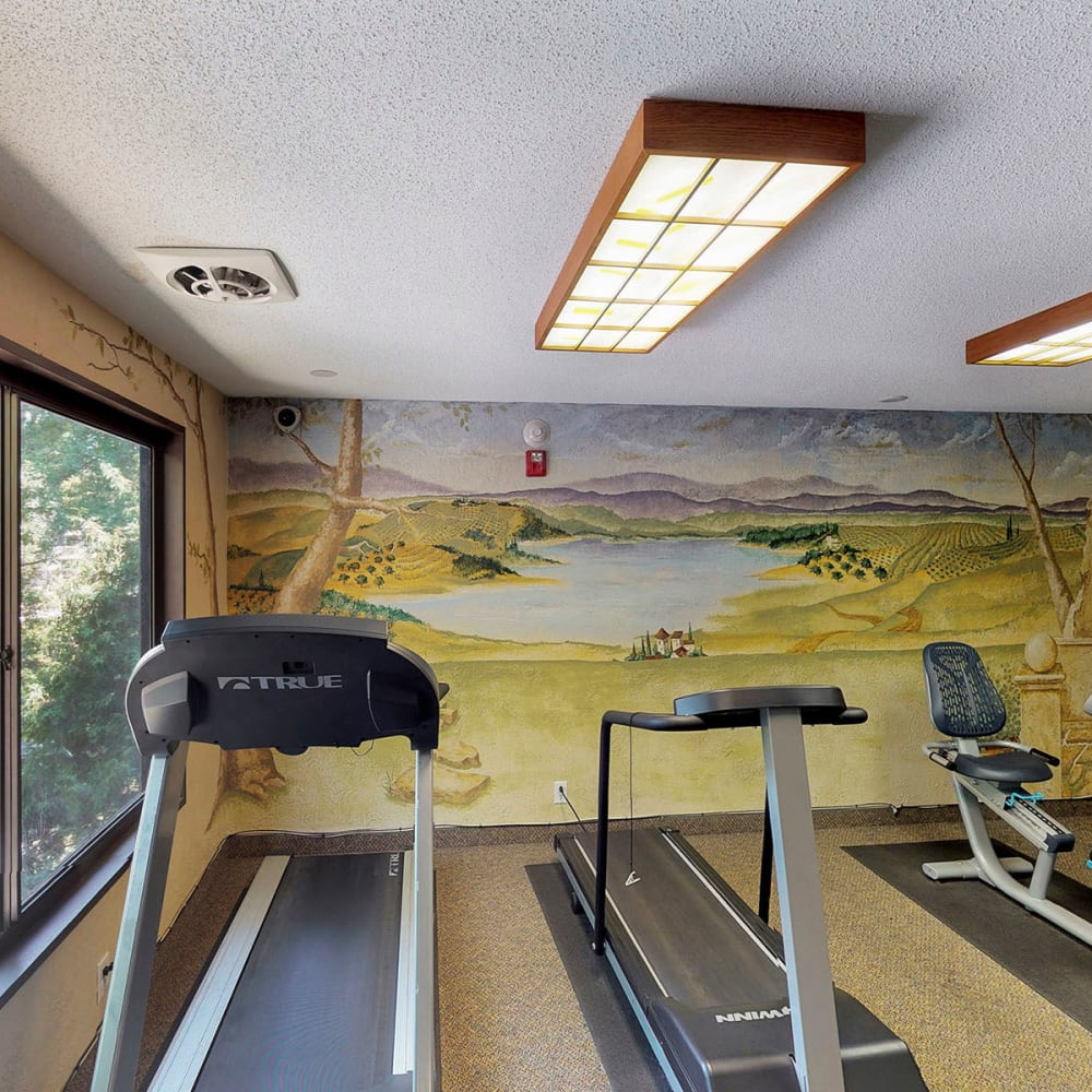 Treadmills looking at a landscape mural in the fitness center at Oaks Braemar in Edina, Minnesota