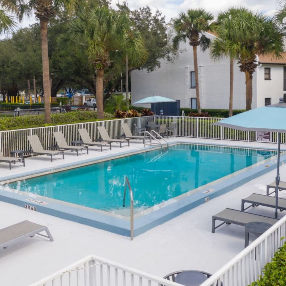 A swimming pool with lounge chairs at Westwood @60 in Brandon, Florida