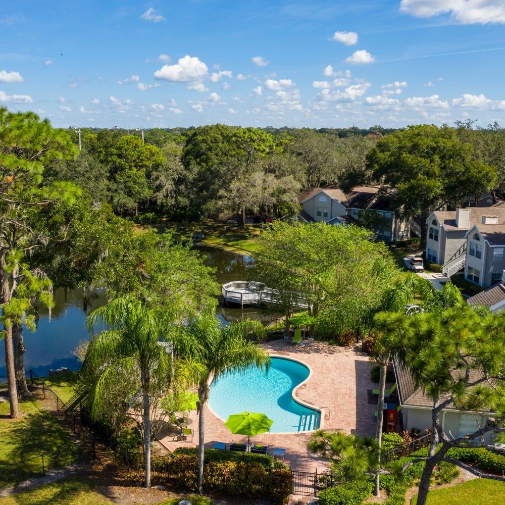 An aerial view of the swimming pool at Avenue @Creekbridge in Brandon, Florida