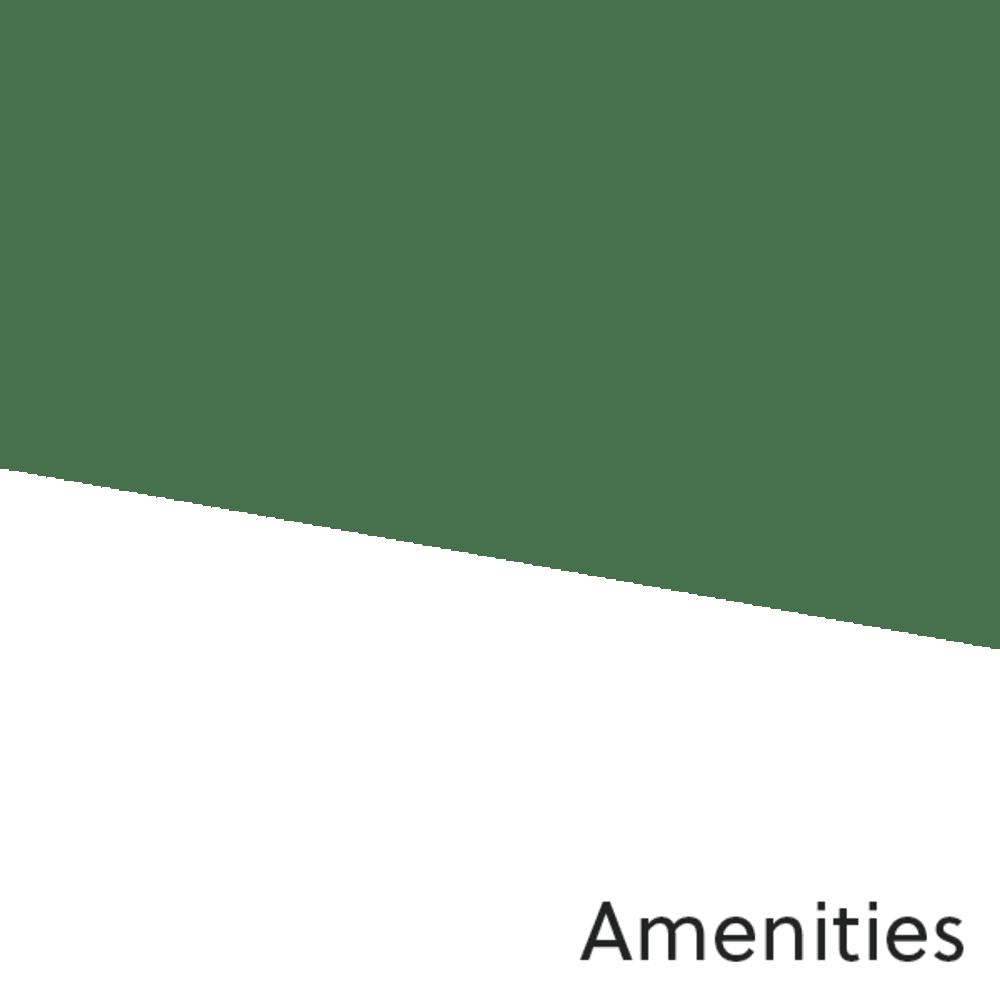 Link to amenities at Pecan Springs Apartments in San Antonio, Texas