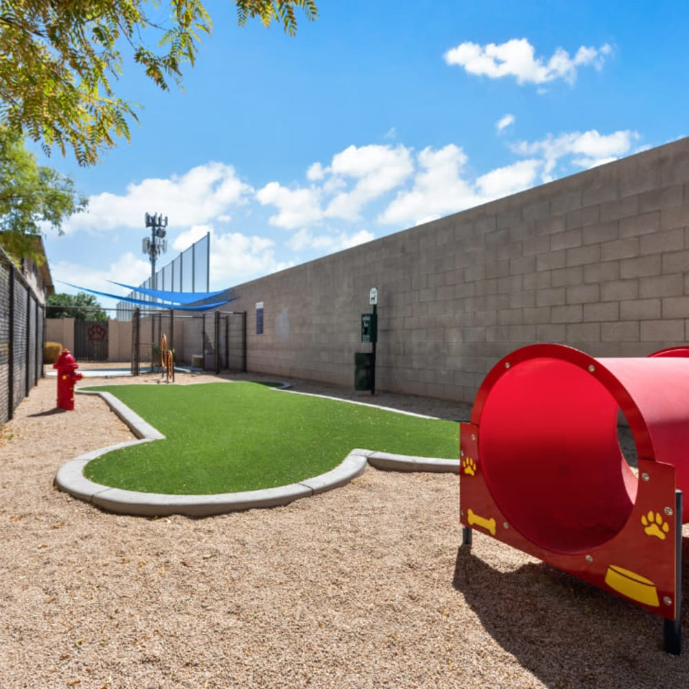 A bark park at 1408 Casitas at Palm Valley in Avondale, Arizona