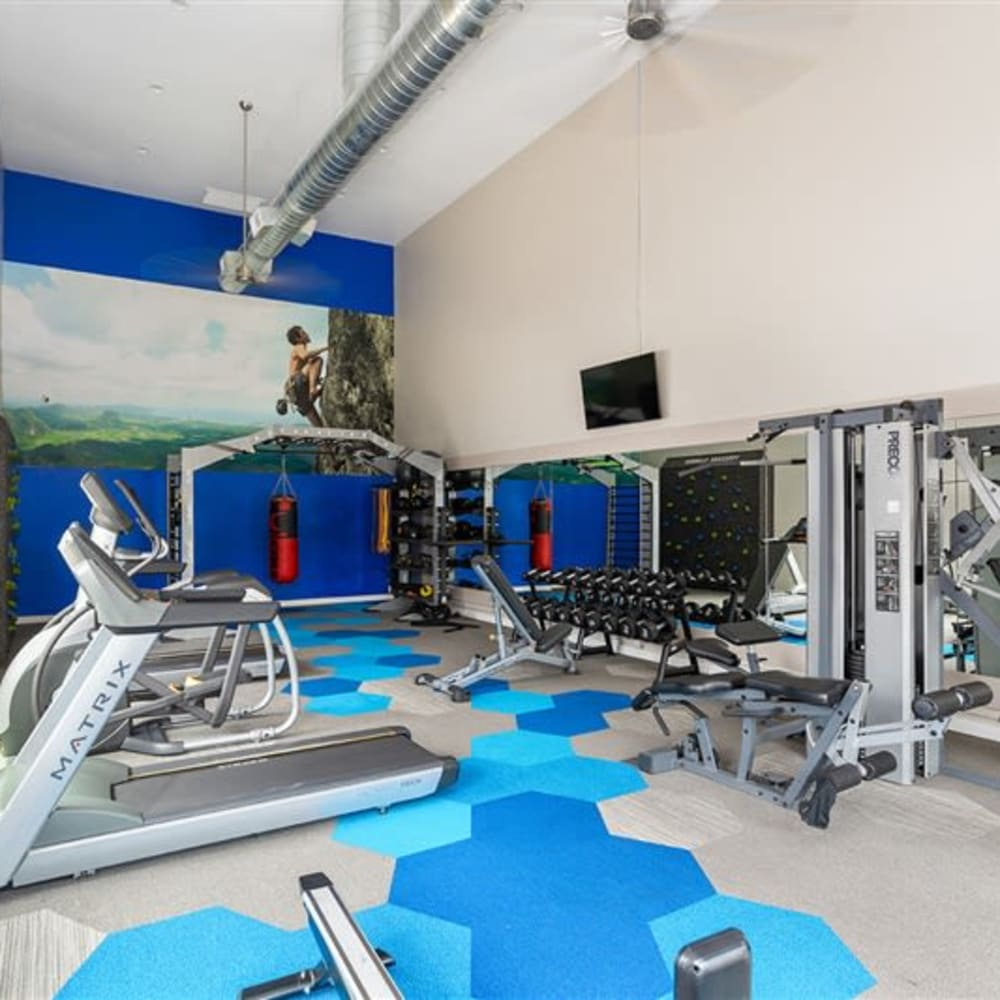 A large fitness center with individual workout stations at Argenta Apartments in Mesa, Arizona