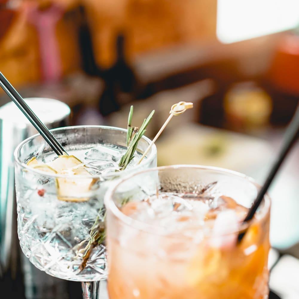 Sharing drinks at 300 Optimist Park in Charlotte, North Carolina