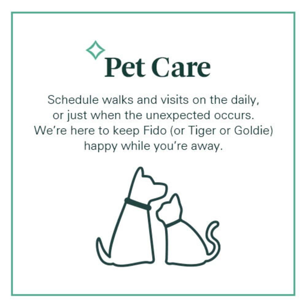 Spruce Pet Care
