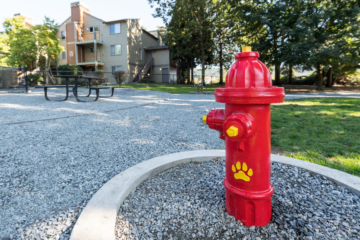 Pet area at Campbell Run Apartments in Woodinville, Washington
