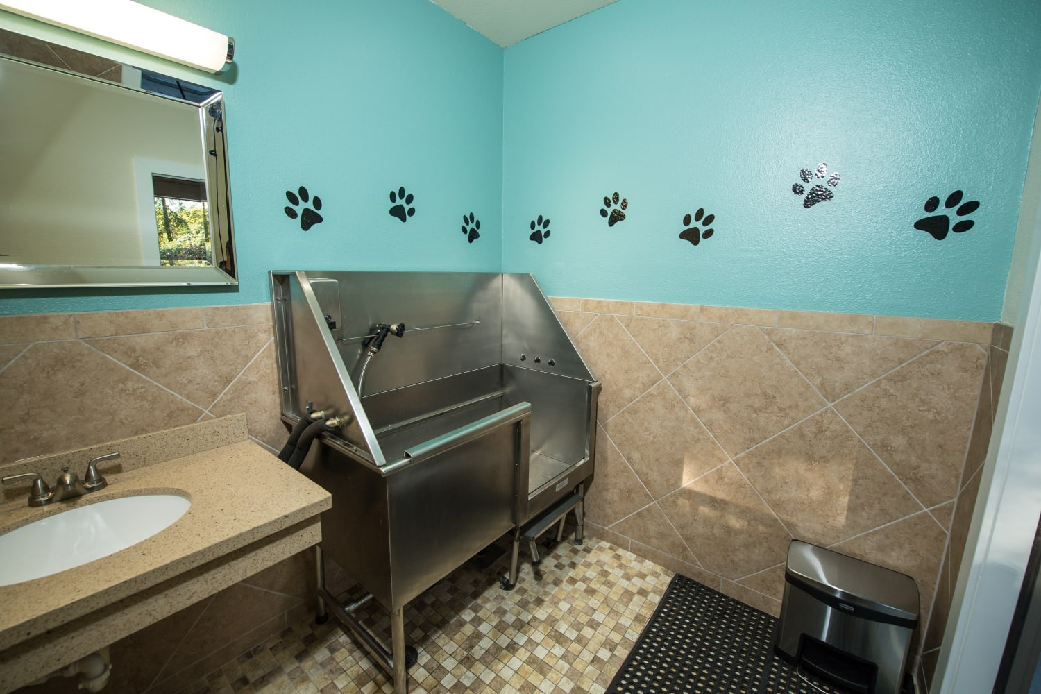 Convenient dog spa at Campbell Run Apartments in Woodinville, Washington