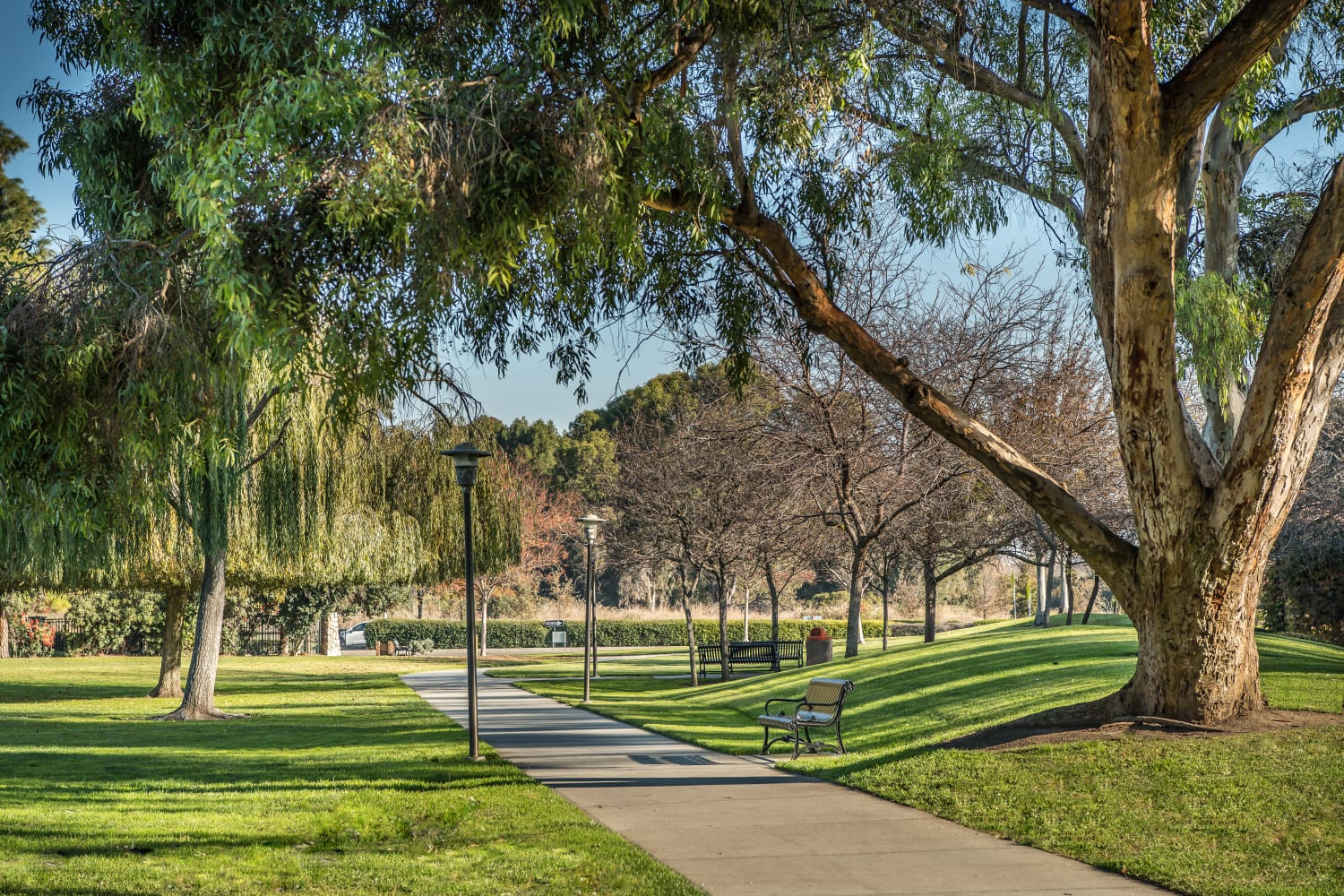 Walking path at Nantucket Apartments in Santa Clara, California