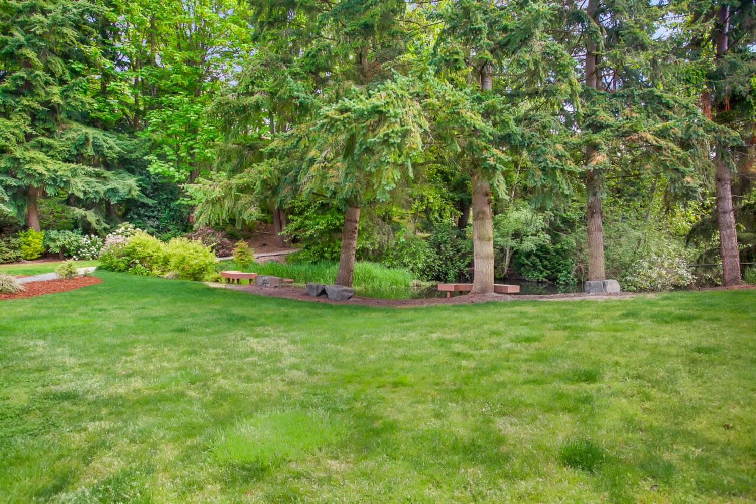 Grassy area for pets to play at The VUE in Kirkland, Washington