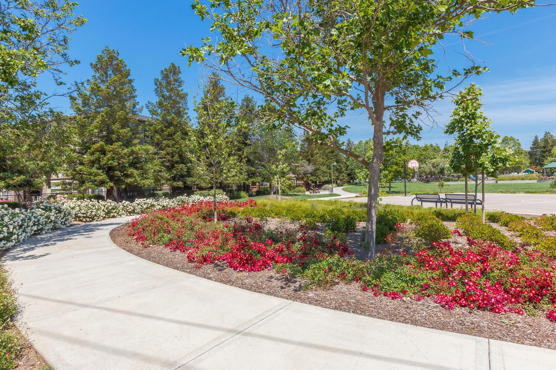Beautiful landscaping at Park Hacienda Apartments in Pleasanton, California