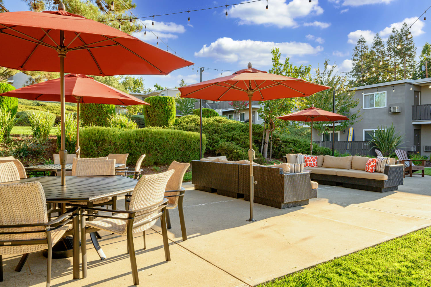 Outdoor lounge on a sunny day at Pleasanton Heights in Pleasanton, California