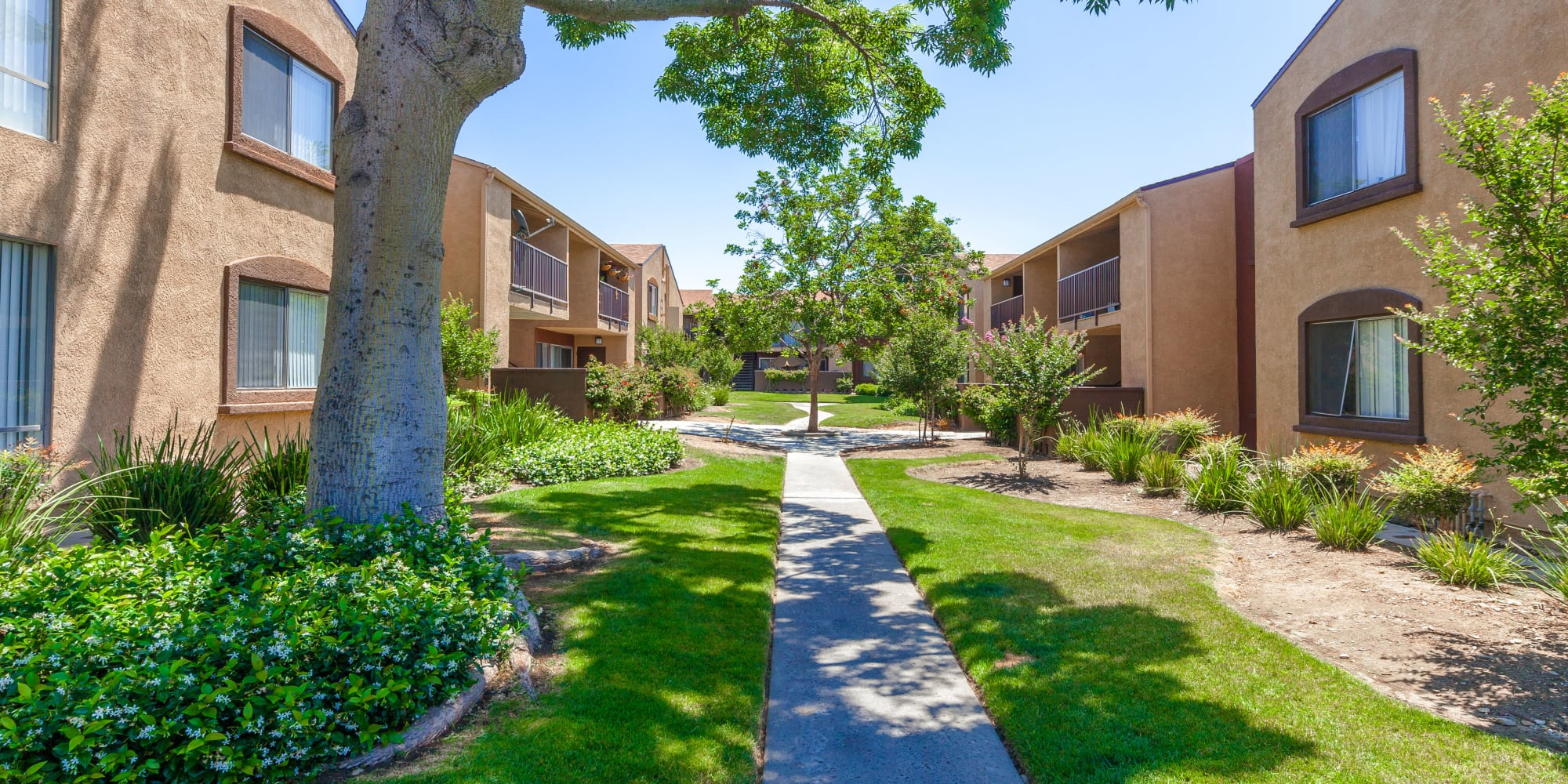 Beautifully manicured outdoor walking path at West Fifth Apartments in Ontario, California