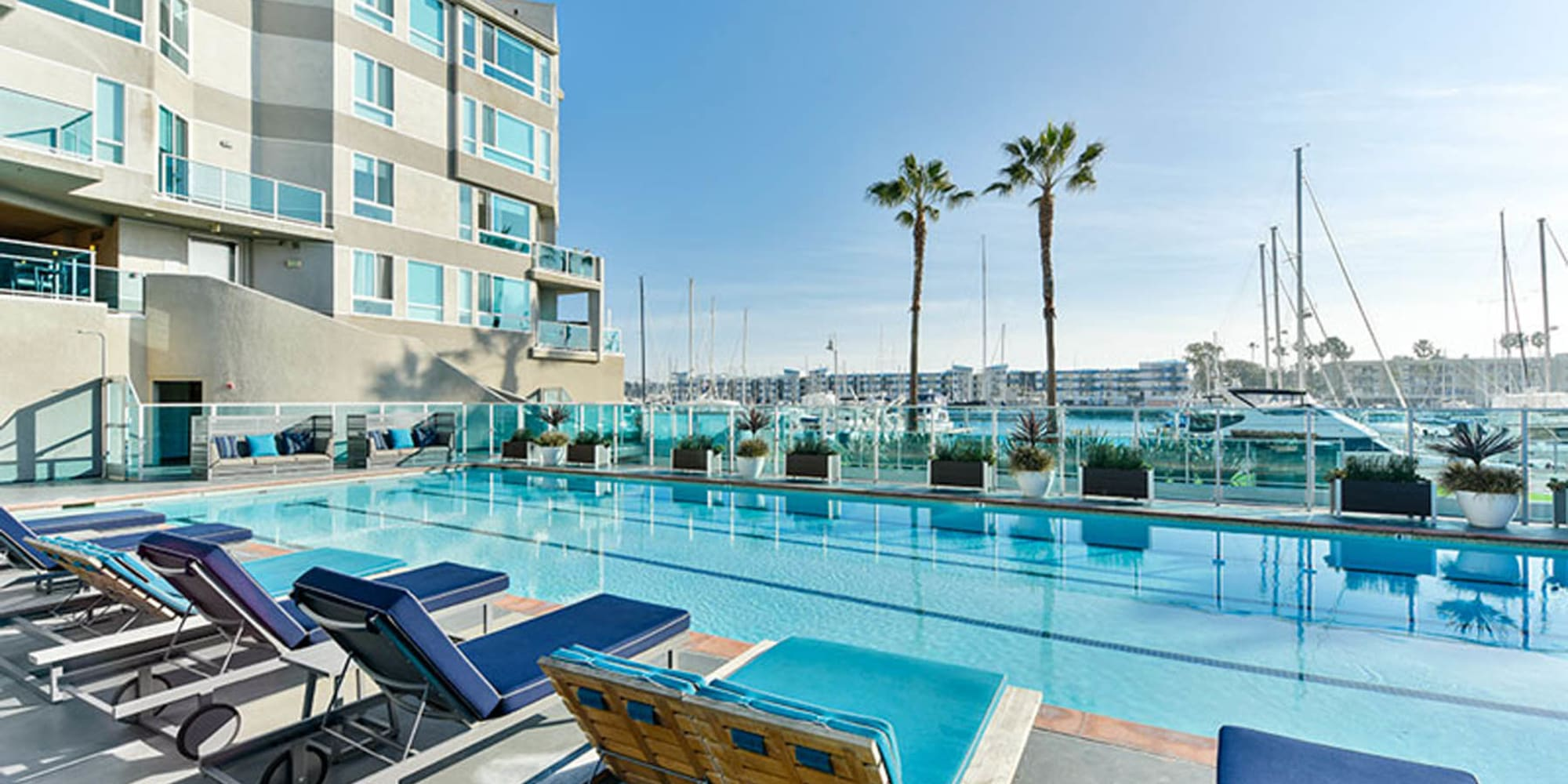 Gorgeous resort-style swimming pool at Esprit Marina del Rey in Marina Del Rey, California