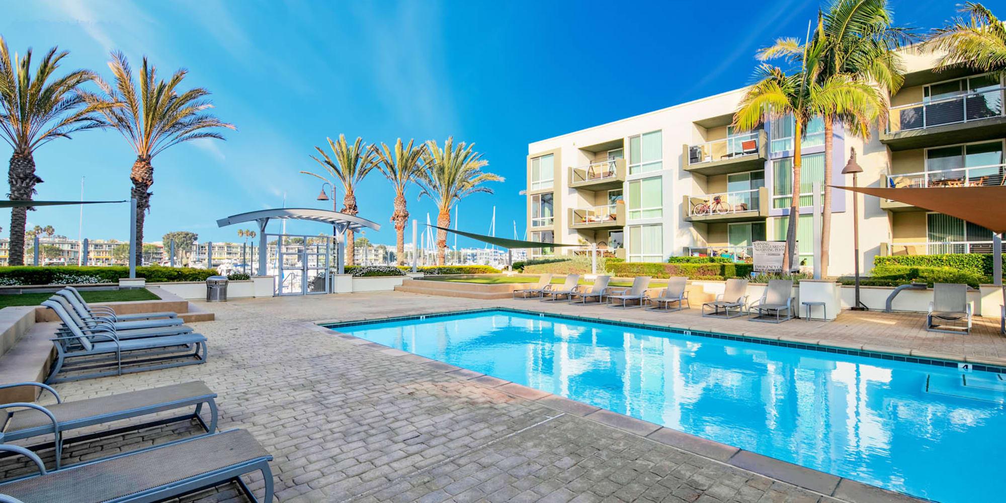 Resort-style swimming pool on a beautiful morning at Waters Edge at Marina Harbor in Marina Del Rey, California