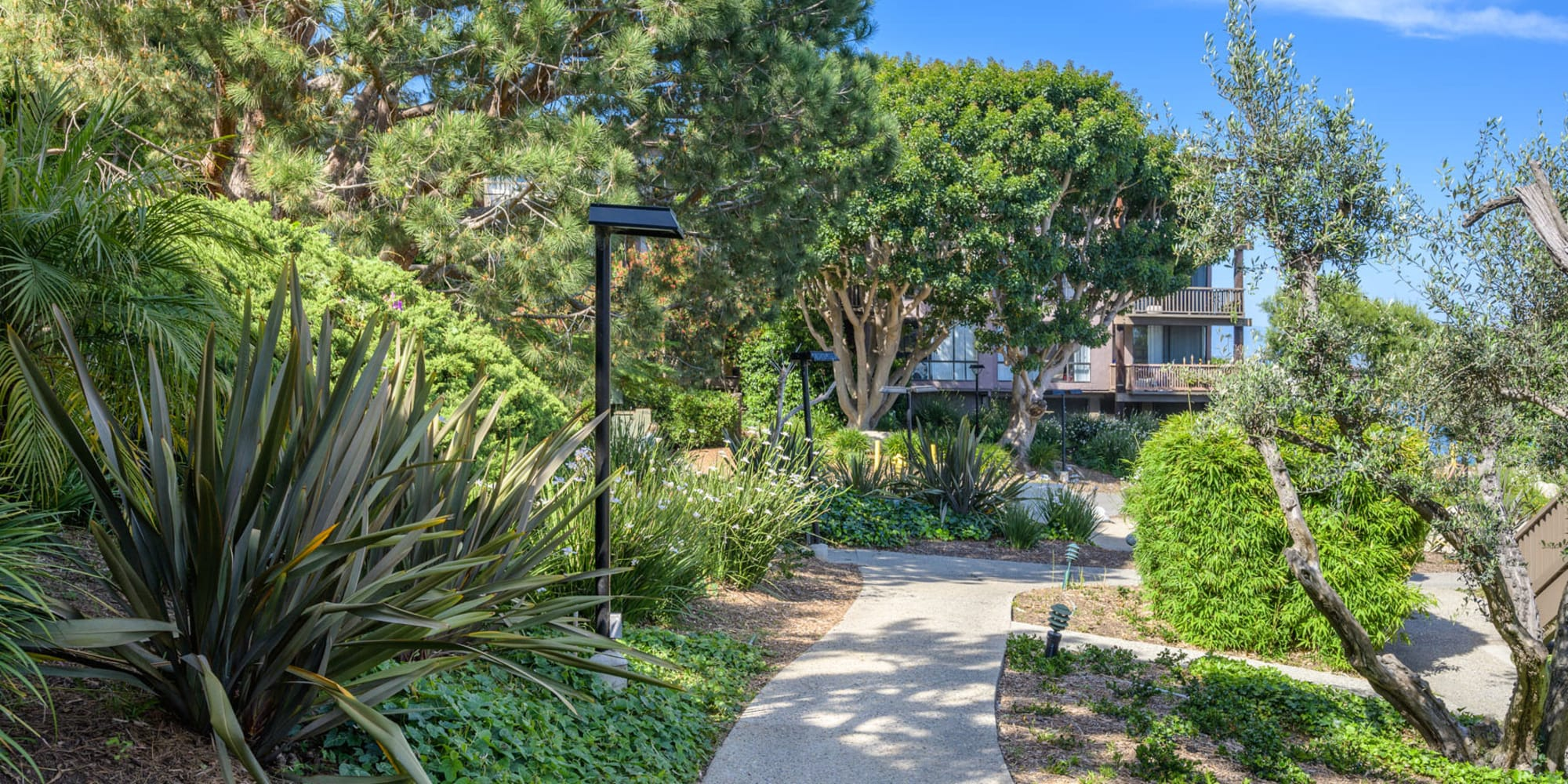 Lush and well-maintained flora throughout the community at Mariners Village in Marina del Rey, California