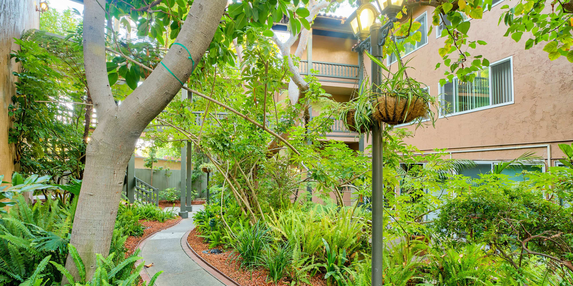 Mature trees and dense, well-managed flora along a pathway between resident buildings at Casa Granada in Los Angeles, California