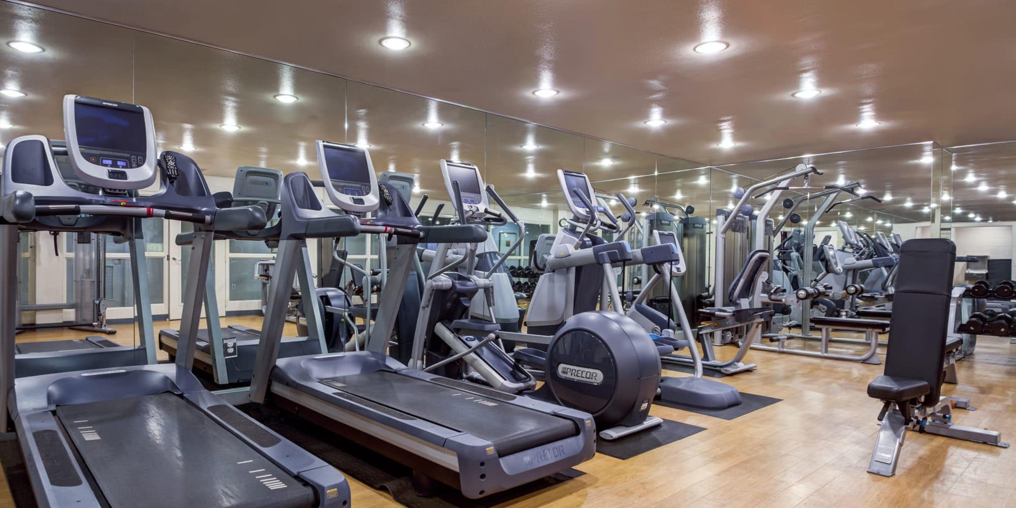 Cardio equipment galore in the onsite fitness center at L'Estancia in Studio City, California