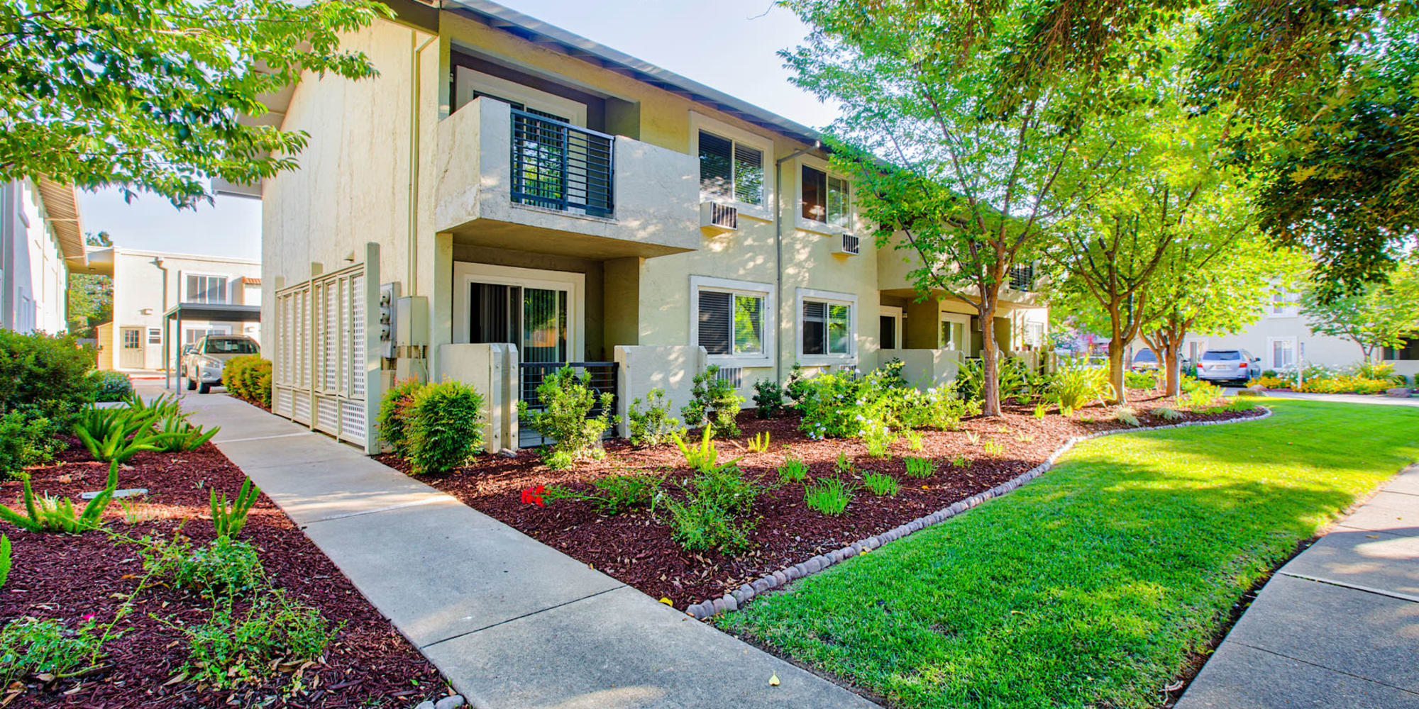 Green grass and mature trees outside resident buildings at Pleasanton Place Apartment Homes in Pleasanton, California