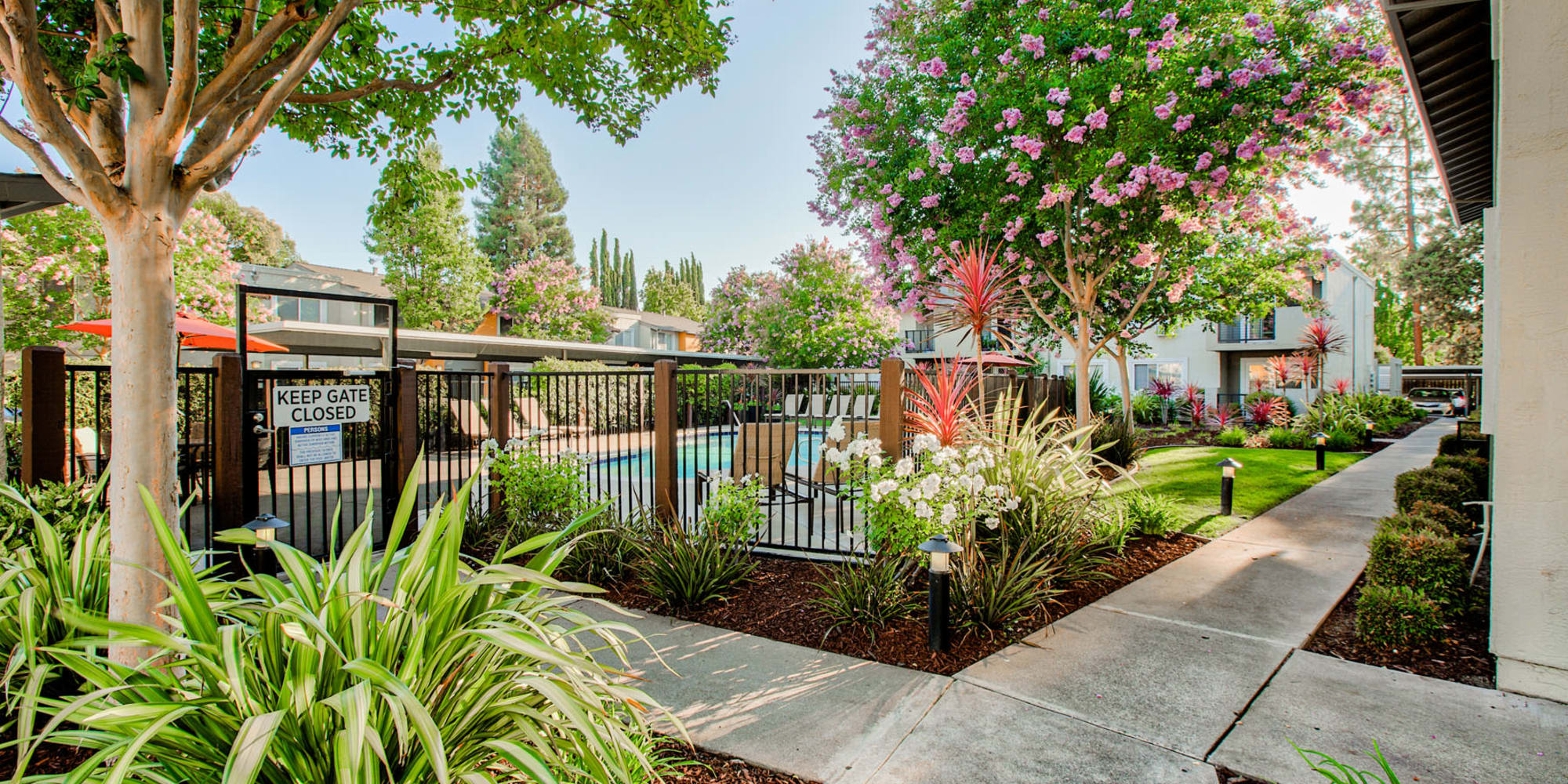 Pathways flanked by mature trees and green vegetation leading to the fenced swimming pool area at Pleasanton Place Apartment Homes in Pleasanton, California
