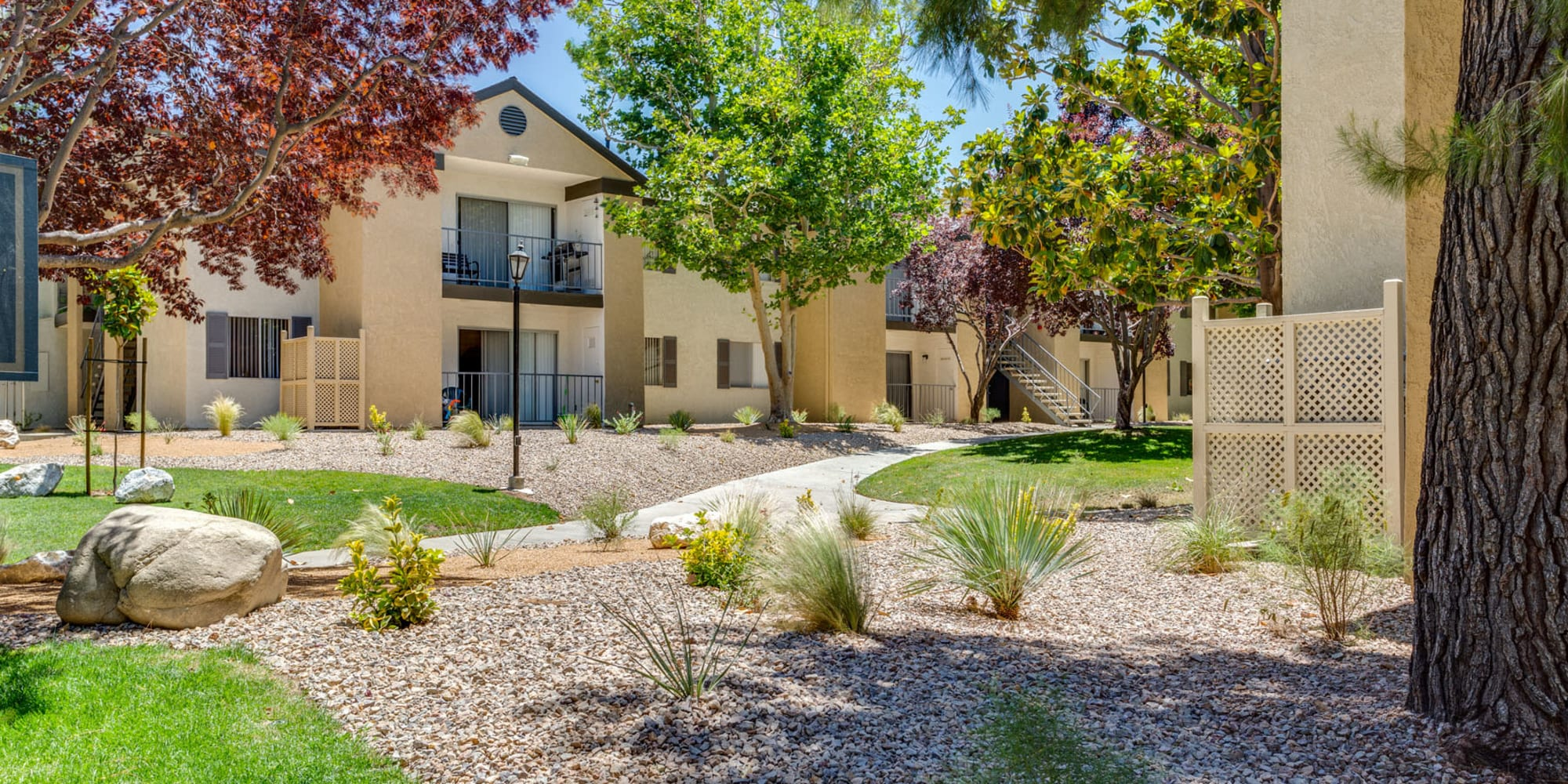 High desert landscaping mixed with lush vegetation and mature trees at Mountain Vista in Victorville, California