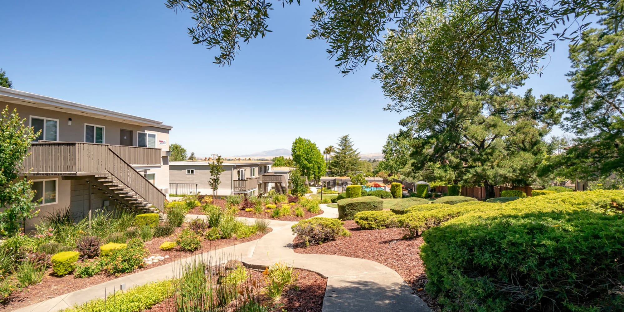 Pathways through the community surrounded by professionally managed landscaping at Pleasanton Heights in Pleasanton, California