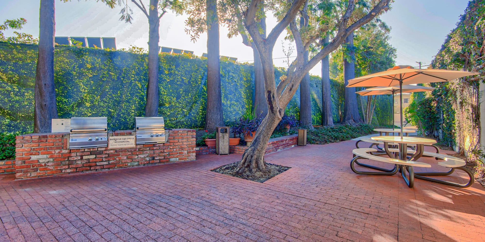 Barbecue area with gas grills and a brick courtyard at Villa Vicente in Los Angeles, California
