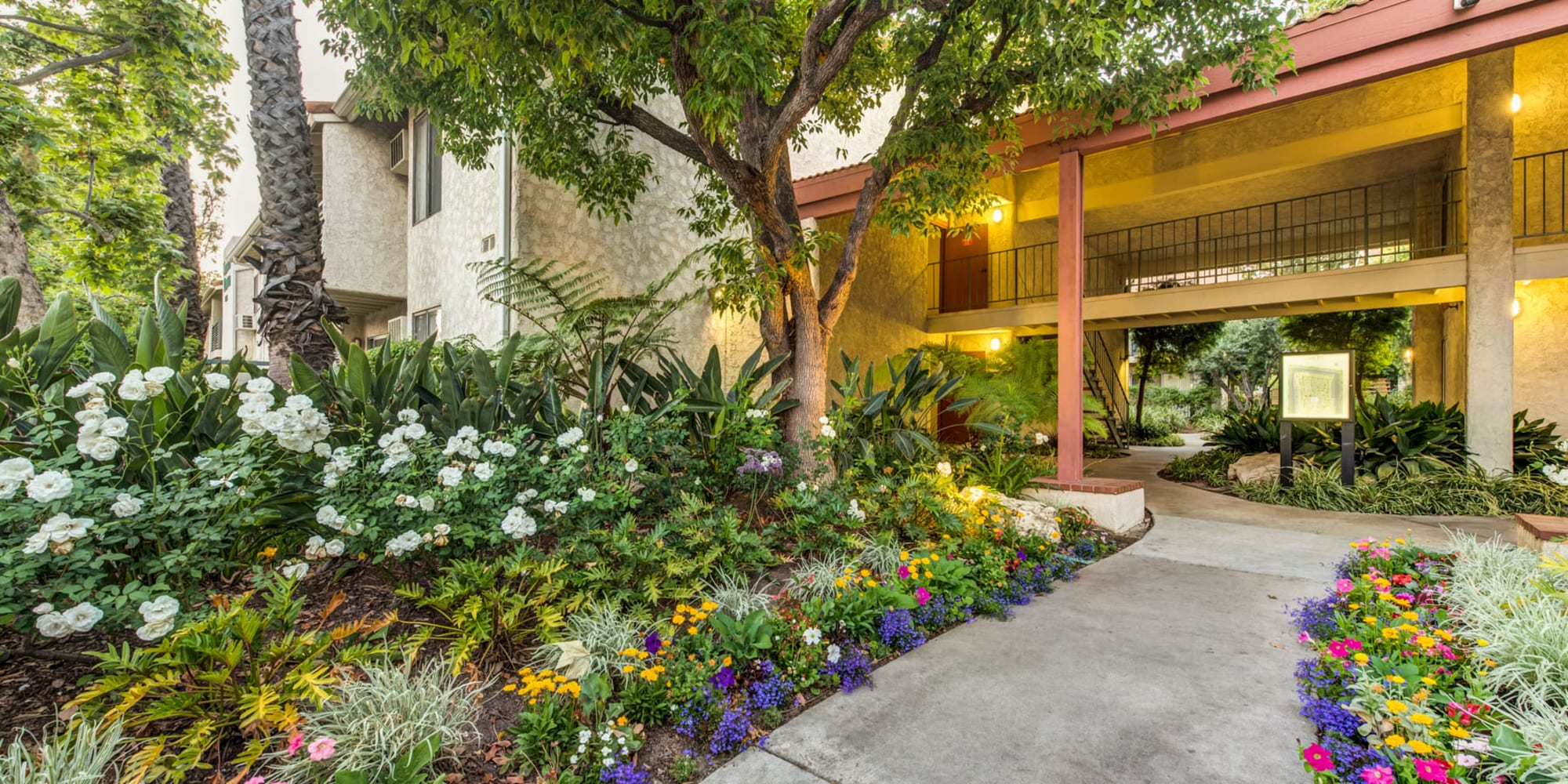 Lush landscaping along a walking path to resident buildings at Village Pointe in Northridge, California