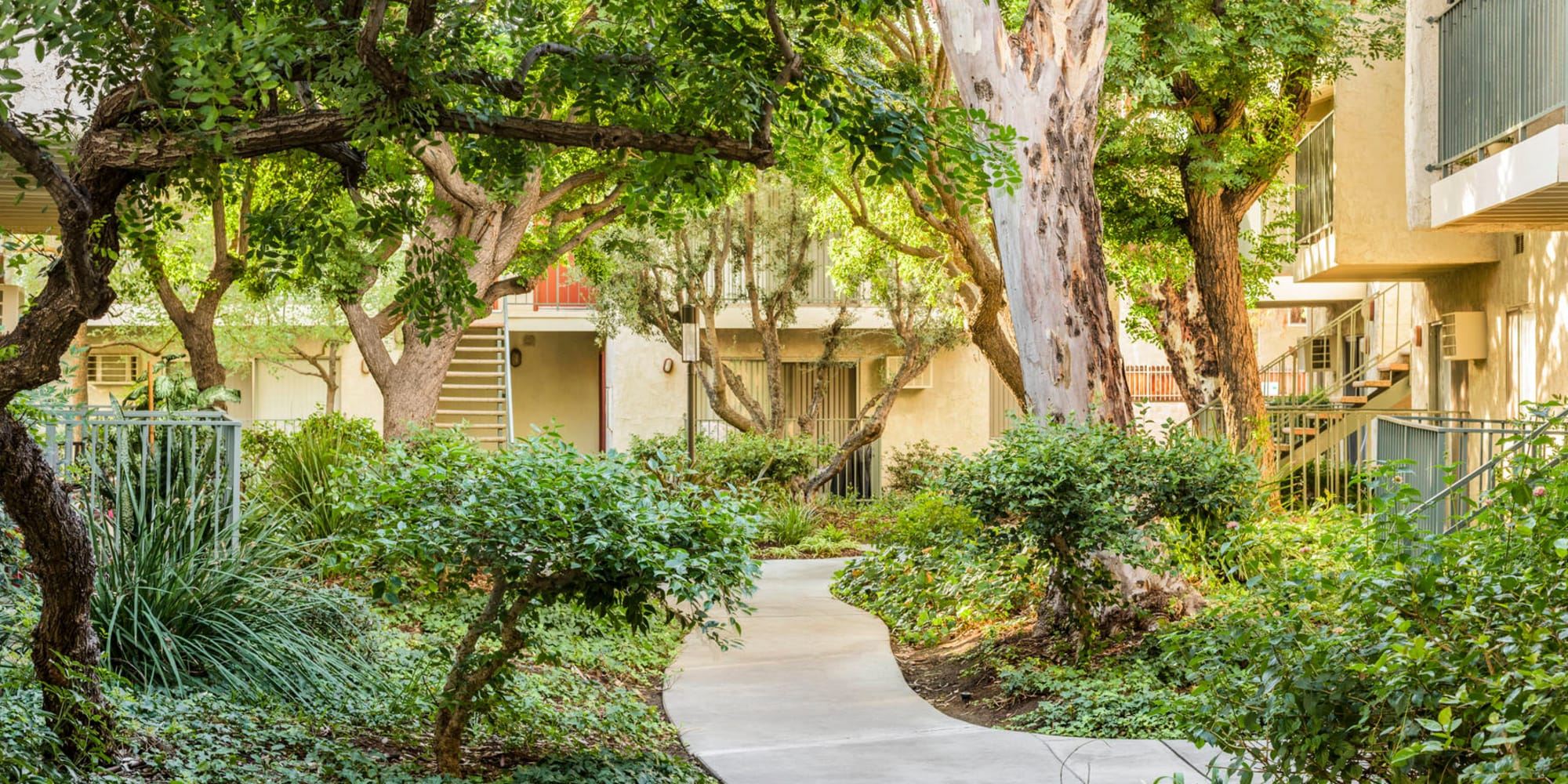 Mature trees and tropical landscaping throughout the community at Village Pointe in Northridge, California
