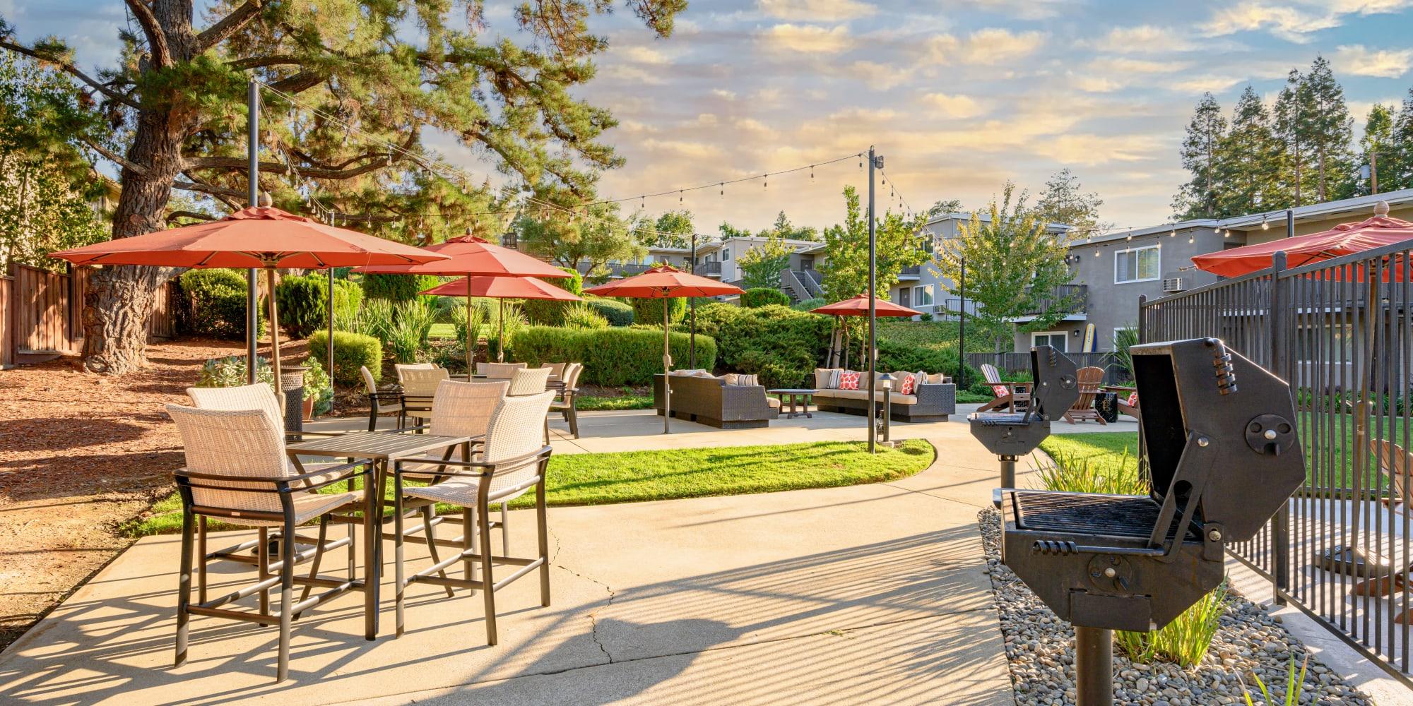 Mature trees providing shade at the barbecue lounge area at Pleasanton Heights in Pleasanton, California