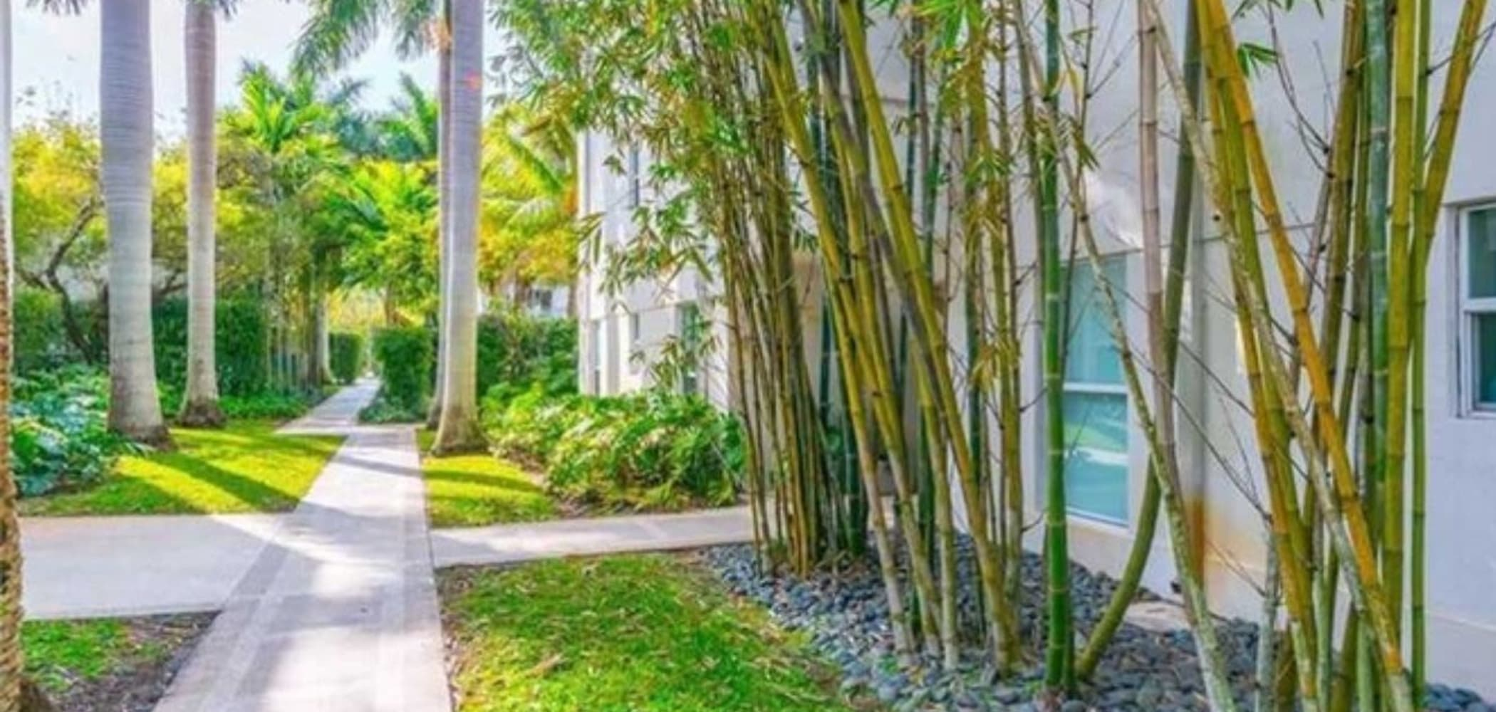 Lush walkways at The Cloisters in Miami, Florida